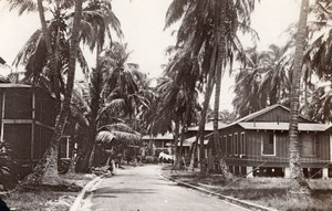 Panama Cristobal Roosevelt Avenue Houses Palm Trees Old GJ Becker Photo 1910's