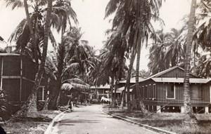 Panama Cristobal Roosevelt Avenue Maisons Palmiers Ancienne Photo GJ Becker 1910's