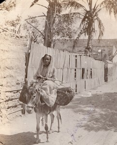Colombia Santa Marta Woman on Donkey going to Market? old GJ Becker Photo 1910's