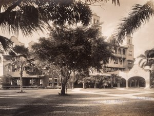 Jamaica Jamaique Kingston Myrtle Bank Hotel Trees old Photo 1910's