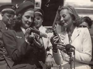 French Actress Michelle Morgan Stewardess Miss Latscha old Press Photo 1947