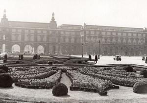 Paris Daffodil Flowerbeds Palais des Tuileries old Meurisse Photo 1930's
