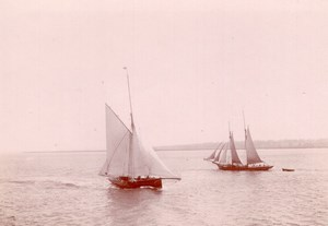 Voiliers Entre l'Angleterre et l'Ile de Wight Ancienne Photo Amateur 1900
