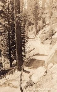 California Fresno County Huntington Lake Forest Lot of 4 RPPC Photos 1930