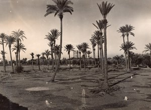 Morocco Marrakech Menara Gardens near American Base old Photo 1940's