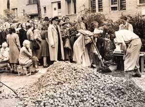 Germany Berlin Zehlendorf Queueing for Potatoes Ration old Press Photo 1945