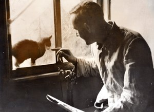 Germany ? WWII Cat Visit at the Window of a Bunker old Press Photo 1943