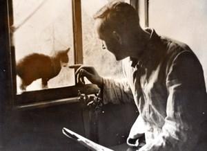 Allemagne ? WWII Chat Visite a la fenetre d'un Bunker Ancienne Photo de Presse 1943