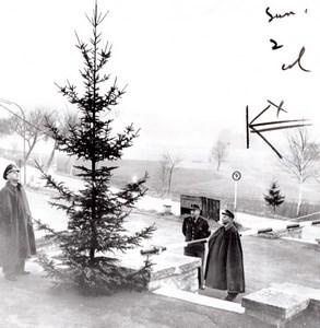 Allemagne de l'Ouest Waidhaus Douaniers Allemands Arbre de Noel Ancienne Photo 1959