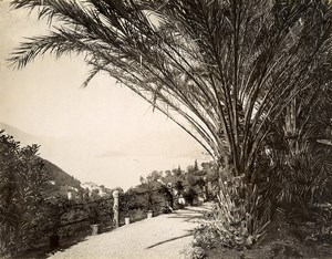 Italy Lake of Como Taken from Villa Serbelloni Old Photo Nessi 1890