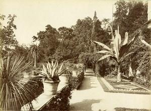 Italy Lake Como Tremezzo Villa Carlotta Gardens Old Photo Bosetti 1890