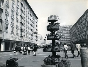 East Germany Leipzig Sachsenplatz Ceramic Planters Old Photo 1970