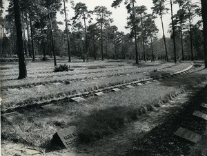 East Germany Potsdam Halbe Military Cemetery Old Photo 1965