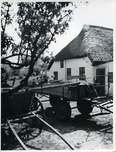 East Germany Baltic Sea Hiddensee Island Village Thatched Cottage Old Photo 1967