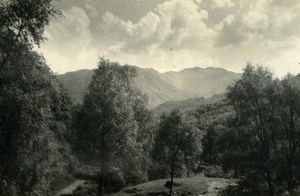 England Lake District Borrowdale Valley Forest Old Amateur Photo 1930