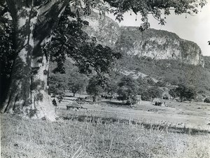 Africa Benin Countryside Landscape Old Photo 1960