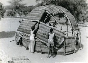 Africa Niger Niamey Setting up Wogo Tent Old Photo 1960