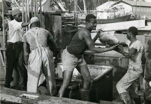 Africa Senegal Fishermen Fishing Boat Old Photo 1960