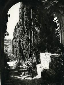 Tunisia Carthage Study Garden Landscape Old Photo Leon Lemaire 1935
