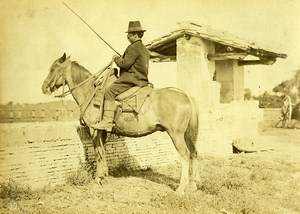 Italy around Naples? Peasant on his horse Old Photo 1890