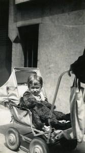 France Lille Ours en peluche Jouet Jeu d'Enfants Ancienne Photo Amateur 1950