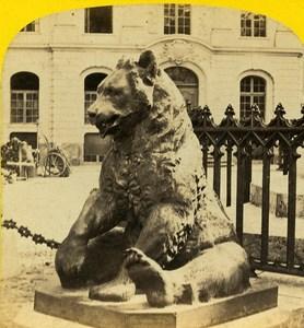 Bear Bern Switzerland Old Stereoview Photo Braun 1865
