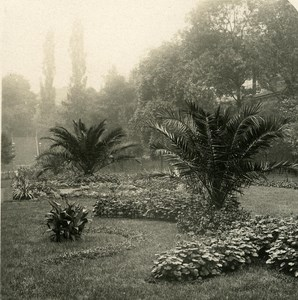 Germany Dresden Garden Place old Stereoview Photo NPG 1900