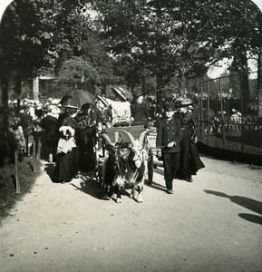France Paris Snapshot Goat Cart old NPG Stereo Photo 1900