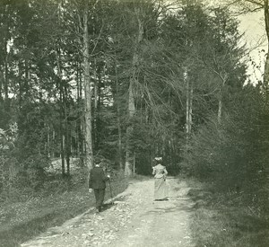 Switzerland Alps Sonnenberg Forest old Possemiers Stereo Photo 1910