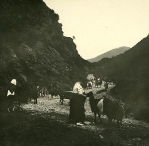 France Pyrenees Luchon la Burbe Valley old Possemiers Stereo Photo 1920