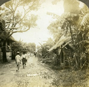 Philippines Bamboo near Manila old Griffith Stereo Photo 1900