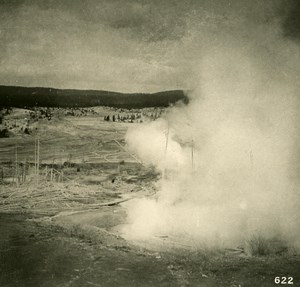 USA Yellowstone Park At the Lower Geyser Basin Old NPG Stereo Photo 1900