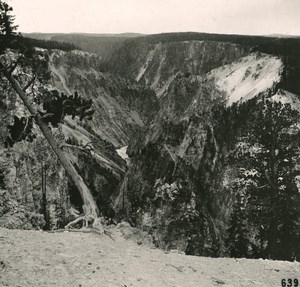 USA Yellowstone Park the Grand Canyon Old NPG Stereo Photo 1900
