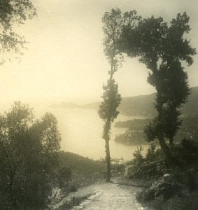 Italy Liguria Riviera Rapallo Montallegro Road Old NPG Stereo Photo 1900