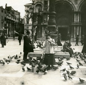 Italy Venice Doves of Piazza San Marco old Possemiers Stereo Photo 1908