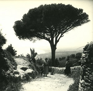 France Corse Environs de Bastia Biguglio ancienne photo stereo Amateur 1920