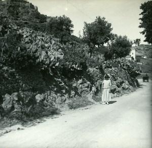 France Corse Environs d Ile Rousse Corbara ancienne photo stereo Amateur 1920