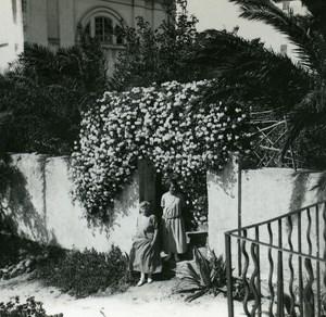 France Corse Ile Rousse Jardins de l Hotel Europe ancienne photo stereo Amateur 1920