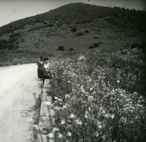 France Corse Environs d Ajaccio ancienne photo stereo Amateur 1920