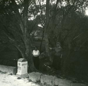 France Corse Bonifacio Bois d Oliviers ancienne photo stereo Amateur 1920