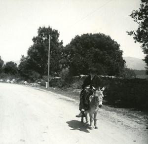 France Corse Pres de San Gavino le Corse et son ane ancienne photo stereo Amateur 1920