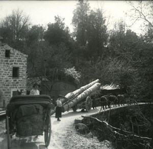 France Corse Col de Verde Transport de Bois ancienne photo stereo 1920