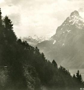 Switzerland Alps Brunnen Urirostock Old Stereo anonymous Studio Photo 1906