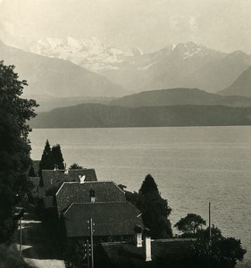 Switzerland Alps Bernese Oberland Lake Thun Old NPG Stereo Photo 1906