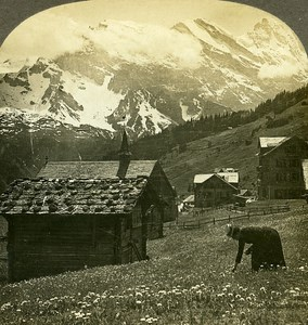 Switzerland Murren Breithorn & Gspaltenhorn Old Stereo Photo William Rau 1900