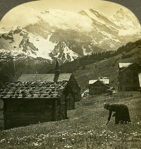 Switzerland Murren Breithorn & Gspaltenhorn Old Stereo Photo William Rau 1900
