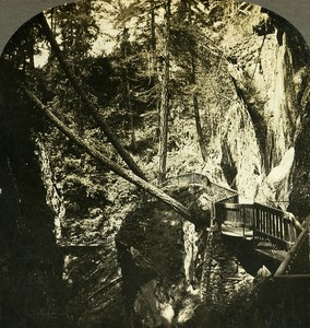 Switzerland In the Gorner Gorge Gorner Glacier Old Stereo Photo William Rau 1900