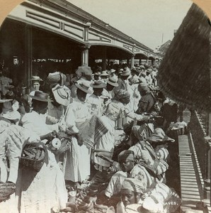 Jamaica Kingston Victoria Market Old Stereo Photo Stereoview Graves 1900