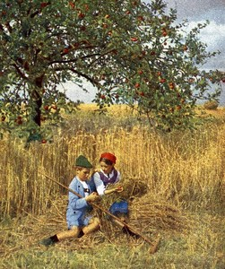 Germany During he Harvest Old Autochrome on Paper from Hans Hildenbrand 1910