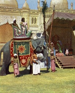 India Indian Prince Elephant Old Autochrome on Paper from Hans Hildenbrand 1910